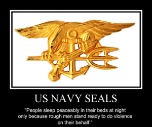 Bravo Zulu Navy Seals!